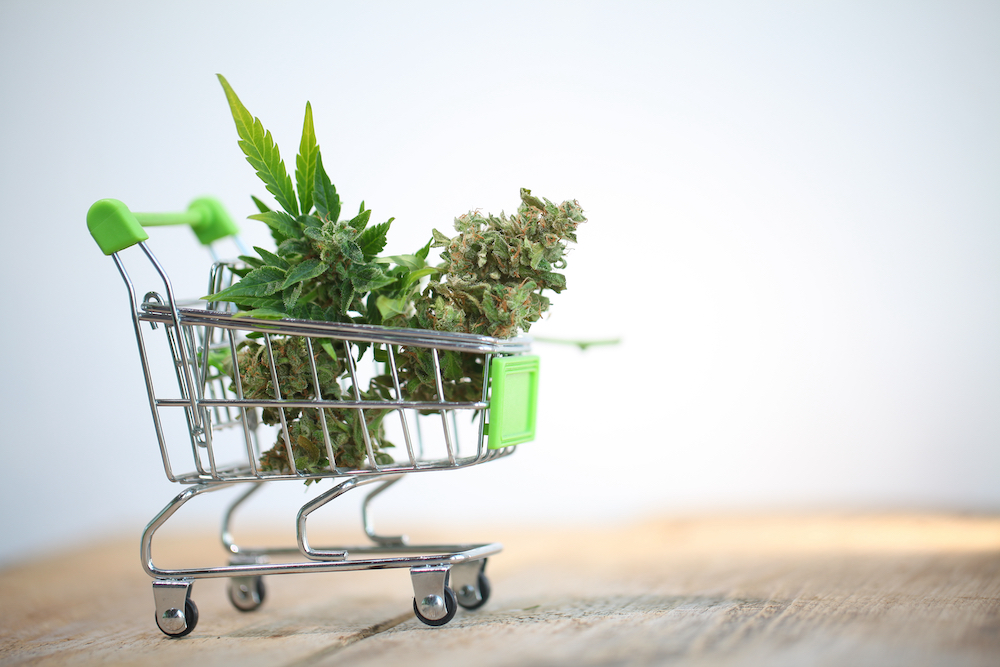 Cannabis plant in tiny shopping cart